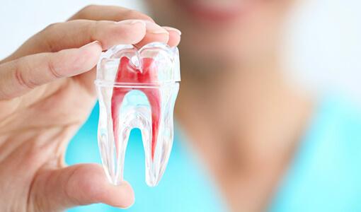 あかなべ歯科 マイクロエンド 精密根管治療
